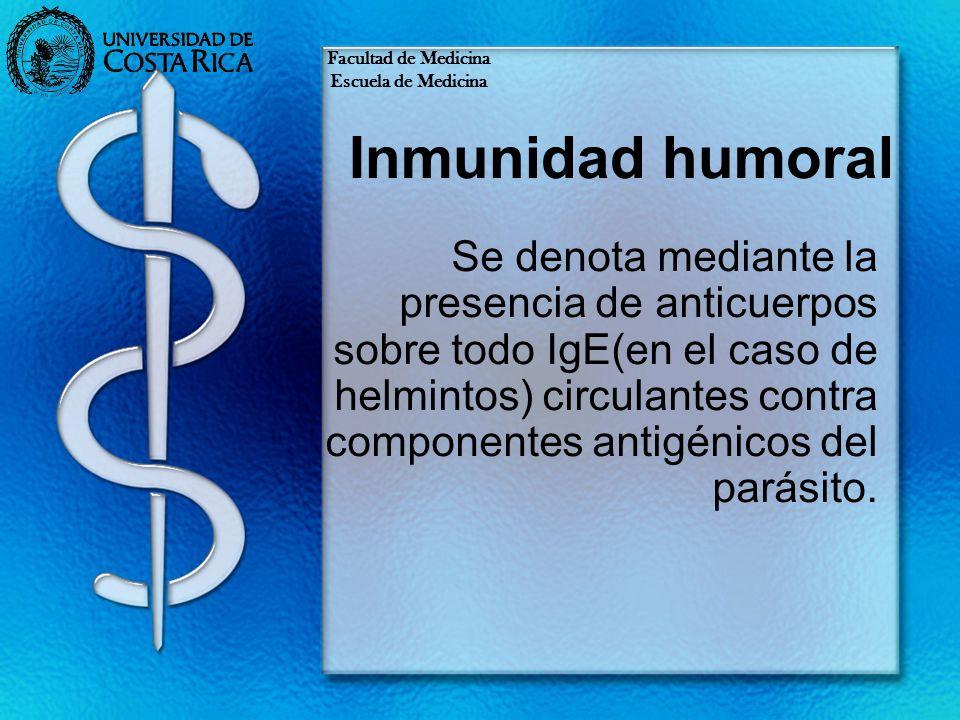 Inmunidad humoral Se denota mediante la presencia de anticuerpos sobre todo IgE(en el caso de helmintos) circulantes contra componentes antigénicos de