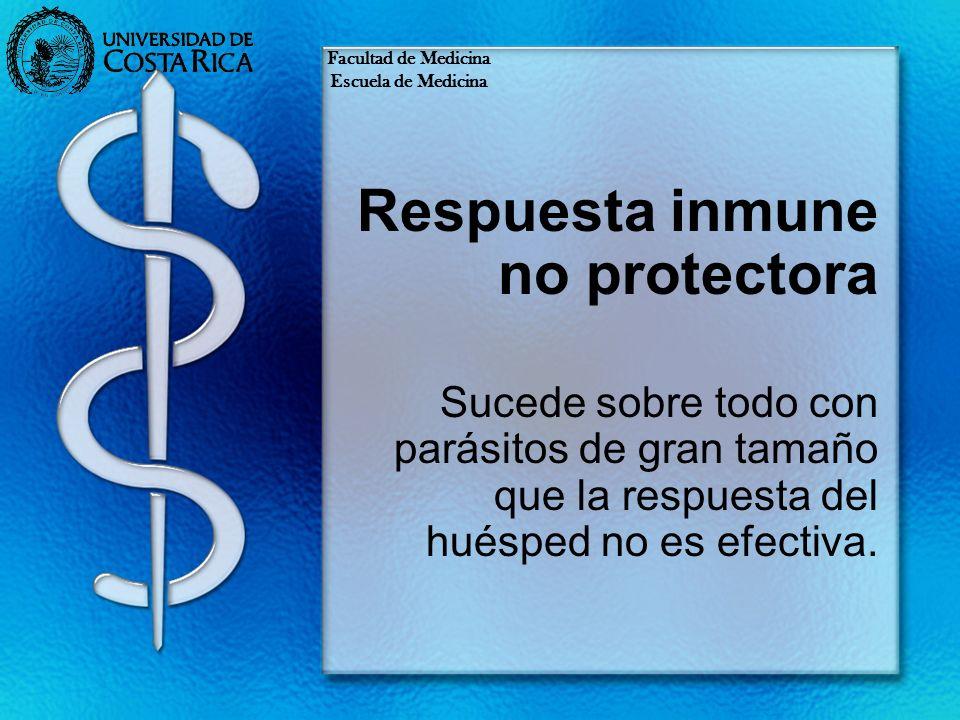 Respuesta inmune no protectora Sucede sobre todo con parásitos de gran tamaño que la respuesta del huésped no es efectiva. Facultad de Medicina Escuel