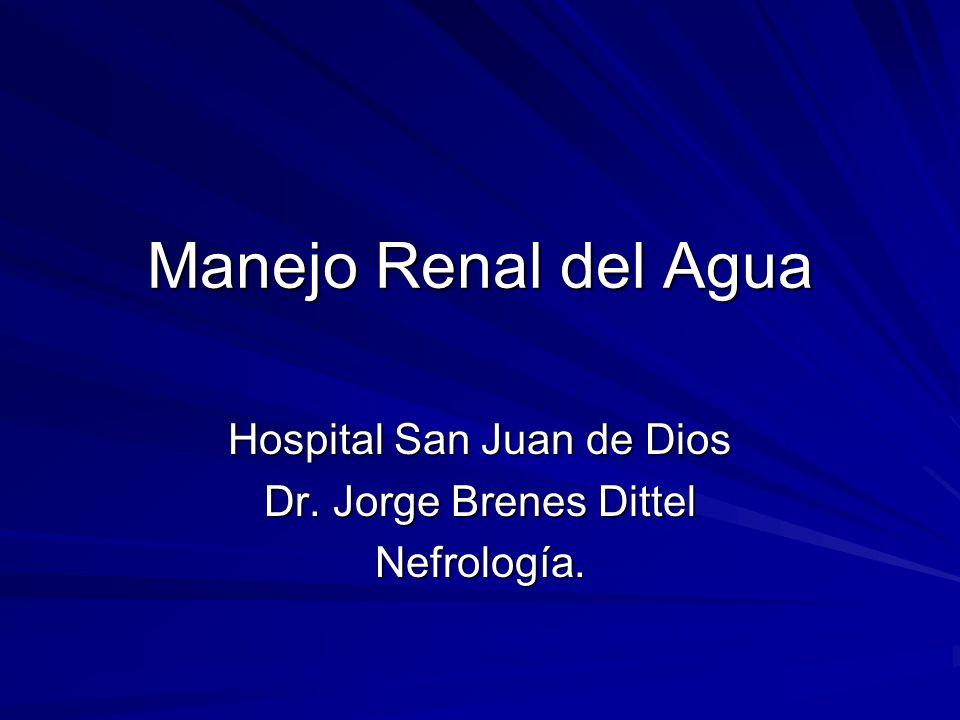 Manejo Renal del Agua Hospital San Juan de Dios Dr. Jorge Brenes Dittel Nefrología.
