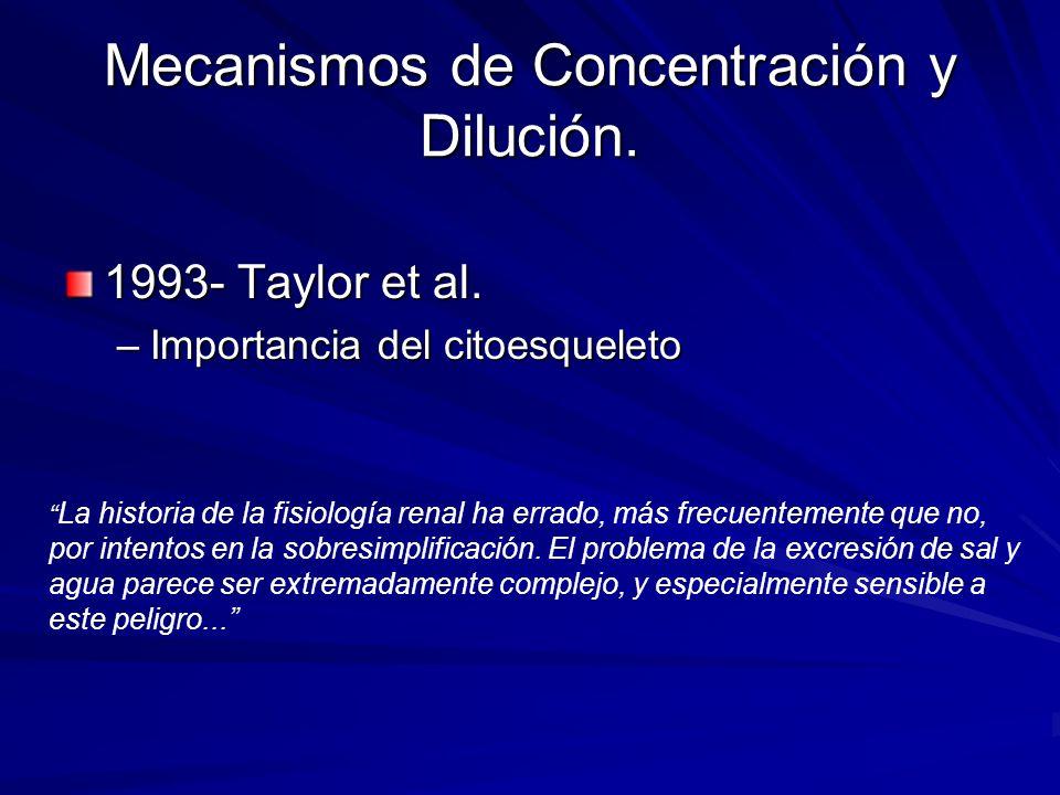 Mecanismos de Concentración y Dilución. 1993- Taylor et al. –Importancia del citoesqueleto La historia de la fisiología renal ha errado, más frecuente