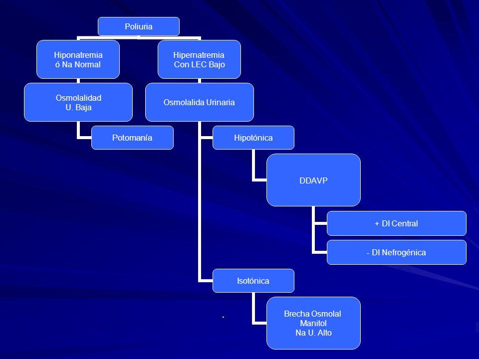 Poliuria Hiponatremia ó Na Normal Osmolalidad U. Baja Potomanía Hipernatremia Con LEC Bajo Osmolalida Urinaria Hipotónica DDAVP + DI Central - DI Nefr