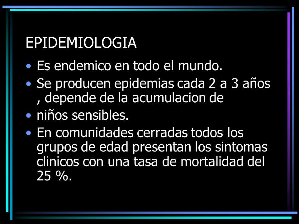EPIDEMIOLOGIA Es endemico en todo el mundo. Se producen epidemias cada 2 a 3 años, depende de la acumulacion de niños sensibles. En comunidades cerrad