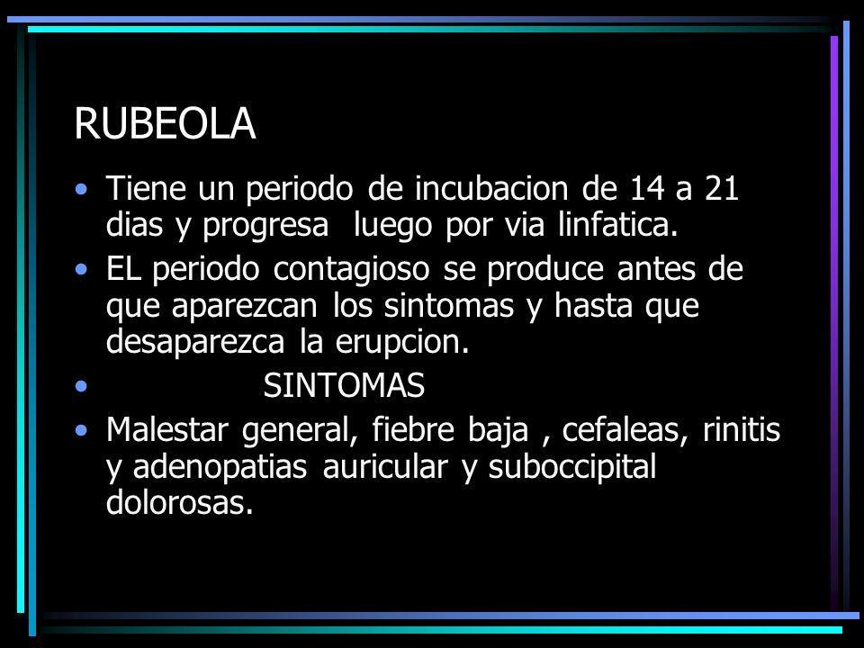 RUBEOLA Tiene un periodo de incubacion de 14 a 21 dias y progresa luego por via linfatica. EL periodo contagioso se produce antes de que aparezcan los
