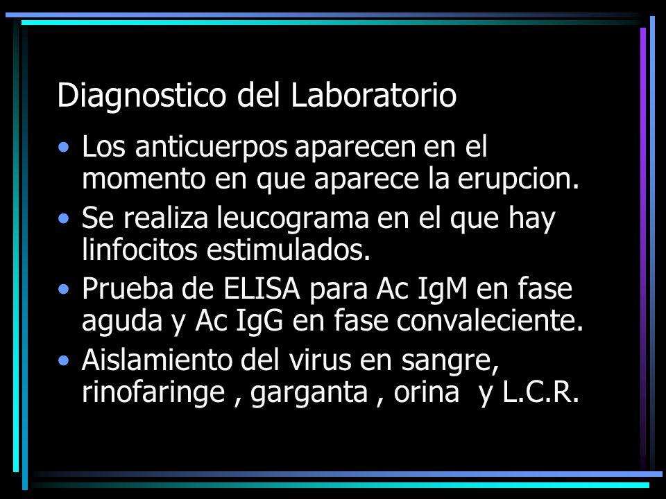 Diagnostico del Laboratorio Los anticuerpos aparecen en el momento en que aparece la erupcion. Se realiza leucograma en el que hay linfocitos estimula