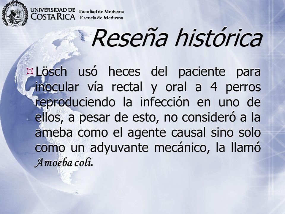 Reseña histórica Lösch usó heces del paciente para inocular vía rectal y oral a 4 perros reproduciendo la infección en uno de ellos, a pesar de esto,