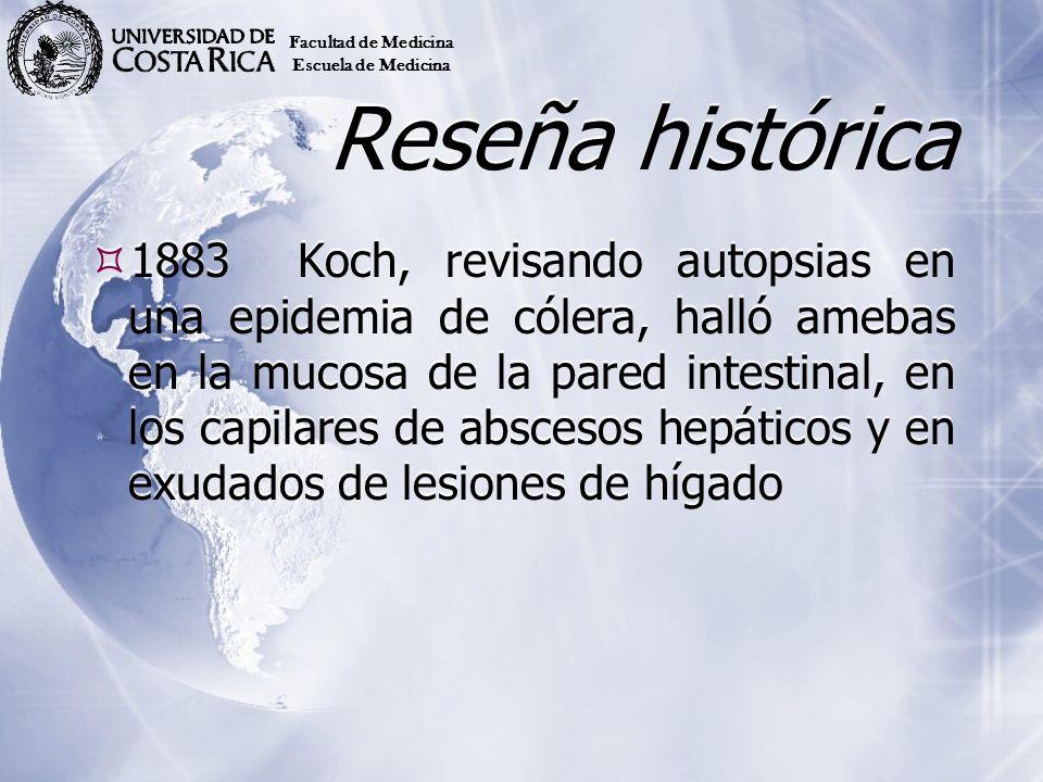 Reseña histórica 1883Koch, revisando autopsias en una epidemia de cólera, halló amebas en la mucosa de la pared intestinal, en los capilares de absces