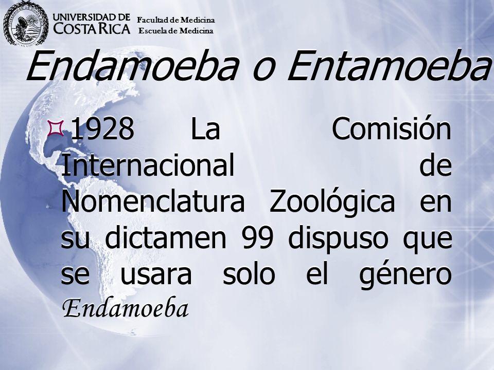 Endamoeba o Entamoeba 1928La Comisión Internacional de Nomenclatura Zoológica en su dictamen 99 dispuso que se usara solo el género Endamoeba Facultad