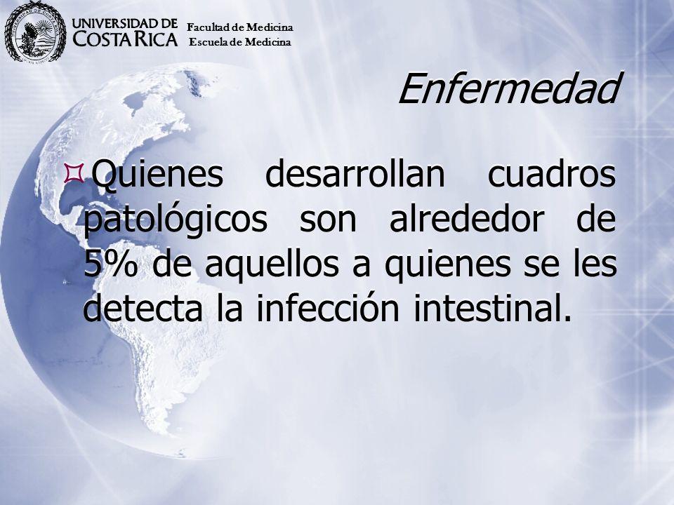 Enfermedad Quienes desarrollan cuadros patológicos son alrededor de 5% de aquellos a quienes se les detecta la infección intestinal. Facultad de Medic