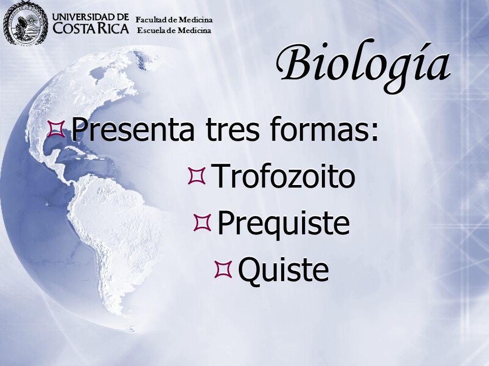 Biología Presenta tres formas: Trofozoito Prequiste Quiste Presenta tres formas: Trofozoito Prequiste Quiste Facultad de Medicina Escuela de Medicina