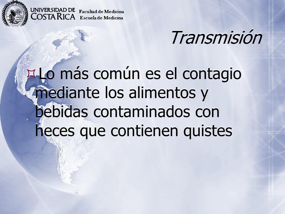 Transmisión Lo más común es el contagio mediante los alimentos y bebidas contaminados con heces que contienen quistes Facultad de Medicina Escuela de
