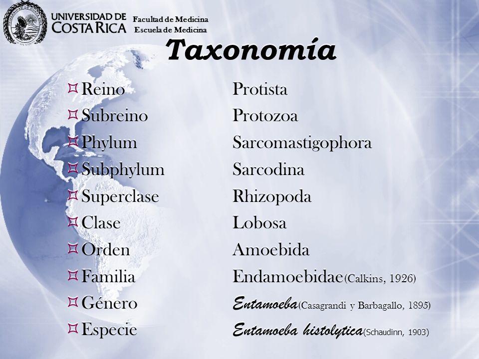 Agente etiológico Entamoeba histolytica (Schaudinn, 1903) de esta especie se conocen 9 zimodemes.
