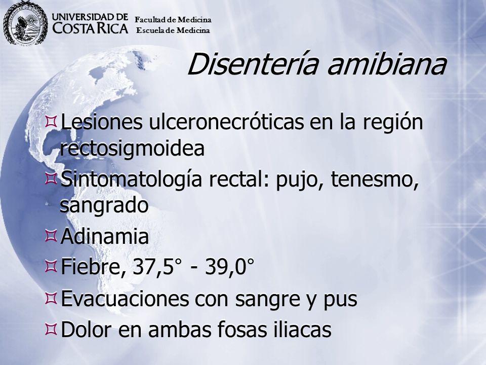 Disentería amibiana Lesiones ulceronecróticas en la región rectosigmoidea Sintomatología rectal: pujo, tenesmo, sangrado Adinamia Fiebre, 37,5° - 39,0