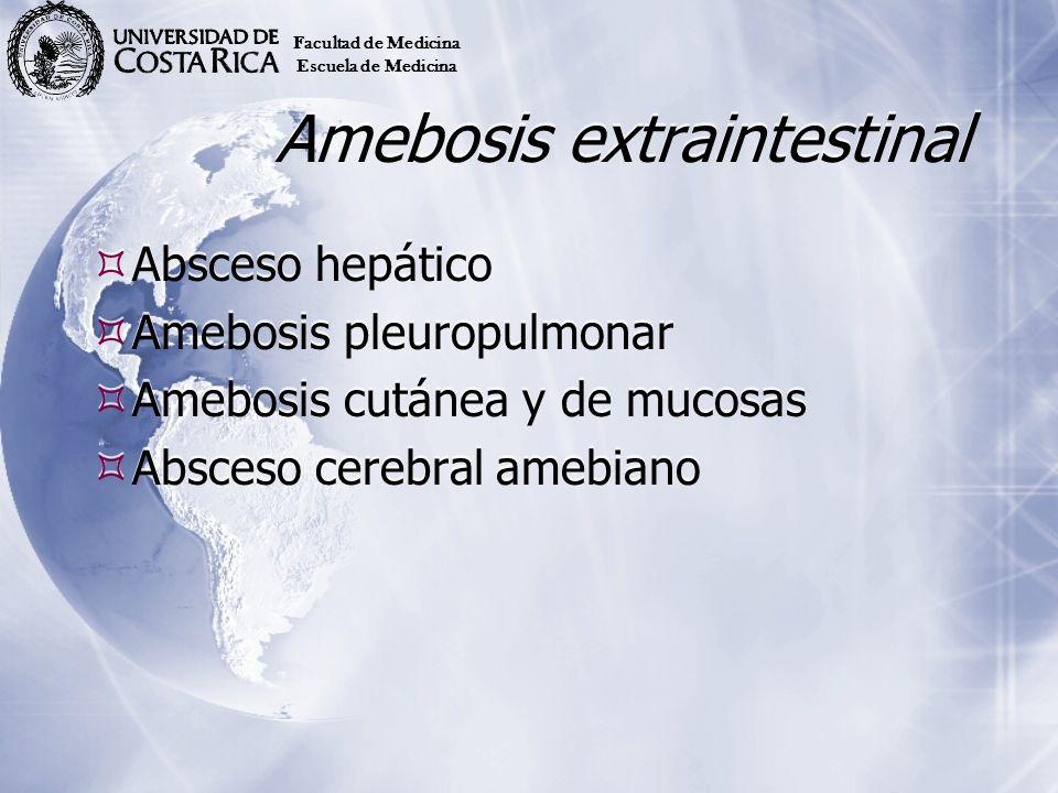 Amebosis extraintestinal Absceso hepático Amebosis pleuropulmonar Amebosis cutánea y de mucosas Absceso cerebral amebiano Absceso hepático Amebosis pl