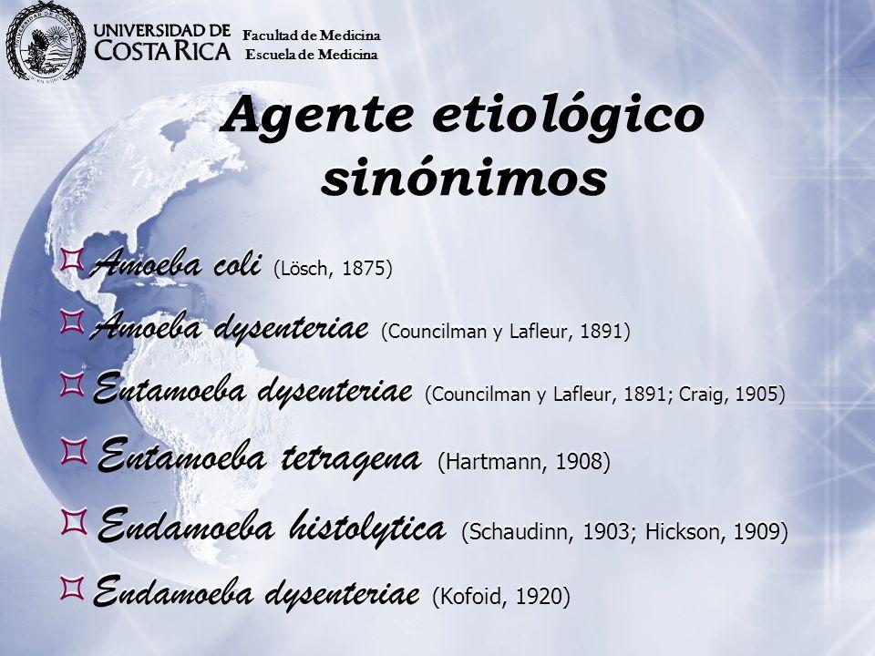 Entamoebosis Es la infección producida por Entamoeba histolytica la cual puede invadir la mucosa intestinal produciendo ulceraciones y además tener localizaciones extraintestinales.