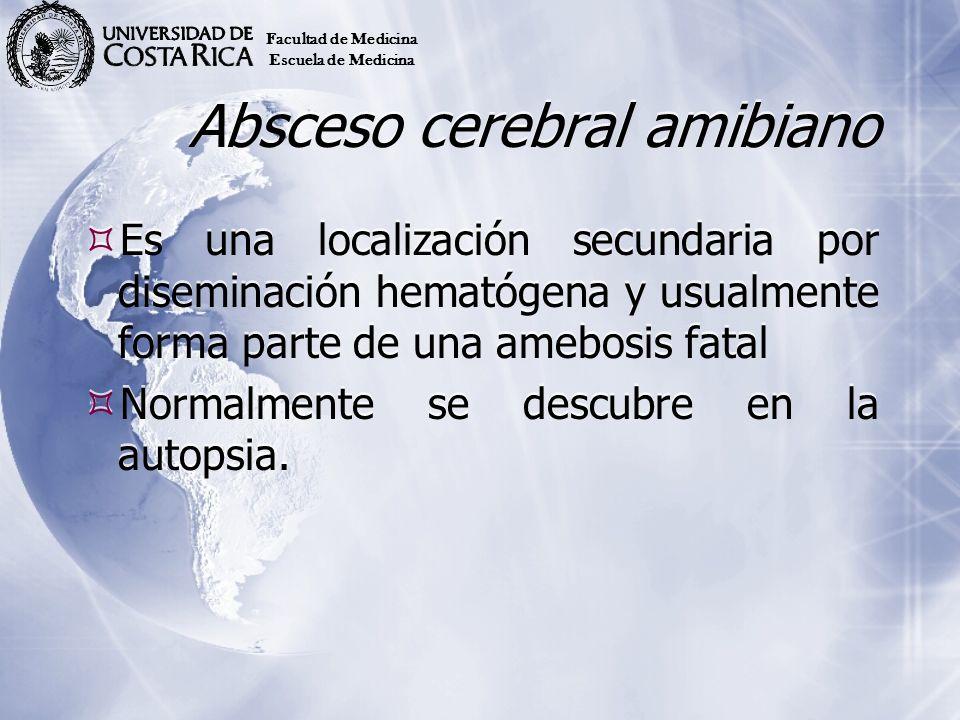 Absceso cerebral amibiano Es una localización secundaria por diseminación hematógena y usualmente forma parte de una amebosis fatal Normalmente se des