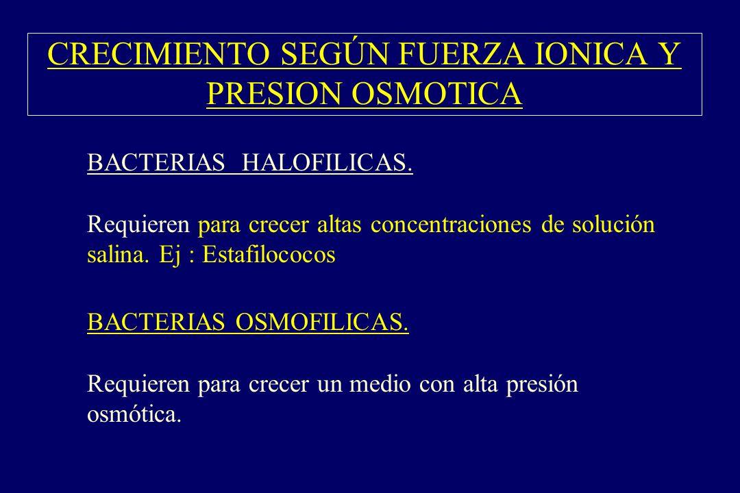 CRECIMIENTO SEGÚN FUERZA IONICA Y PRESION OSMOTICA §BACTERIAS HALOFILICAS. Requieren para crecer altas concentraciones de solución salina. Ej : Estafi