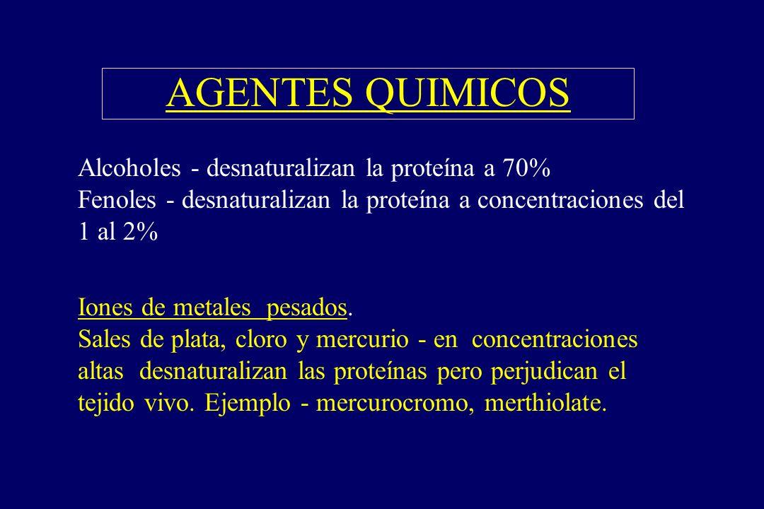 AGENTES QUIMICOS §Alcoholes - desnaturalizan la proteína a 70% Fenoles - desnaturalizan la proteína a concentraciones del 1 al 2% §Iones de metales pe