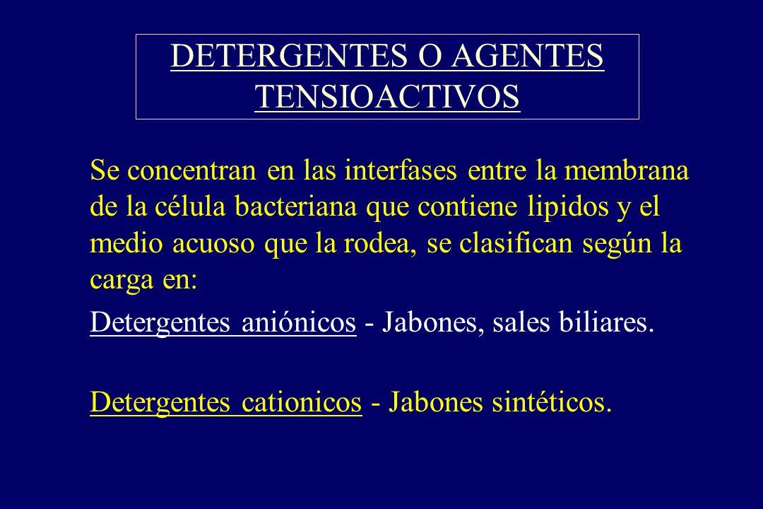 DETERGENTES O AGENTES TENSIOACTIVOS §Se concentran en las interfases entre la membrana de la célula bacteriana que contiene lipidos y el medio acuoso