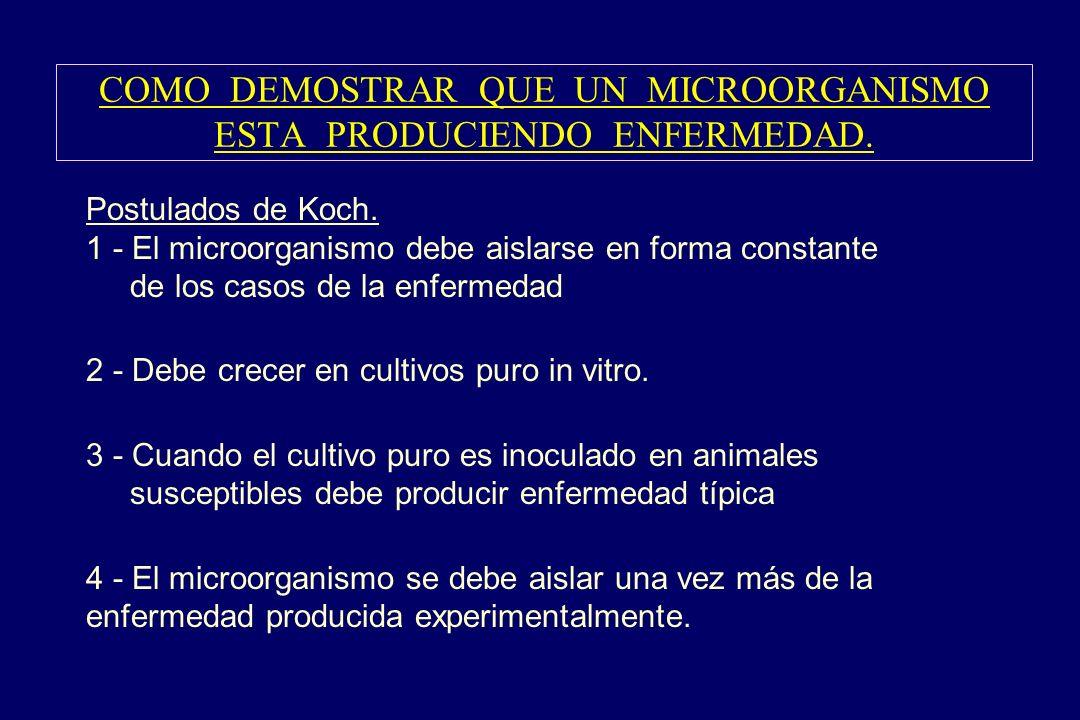 COMO DEMOSTRAR QUE UN MICROORGANISMO ESTA PRODUCIENDO ENFERMEDAD. §Postulados de Koch. 1 - El microorganismo debe aislarse en forma constante de los c