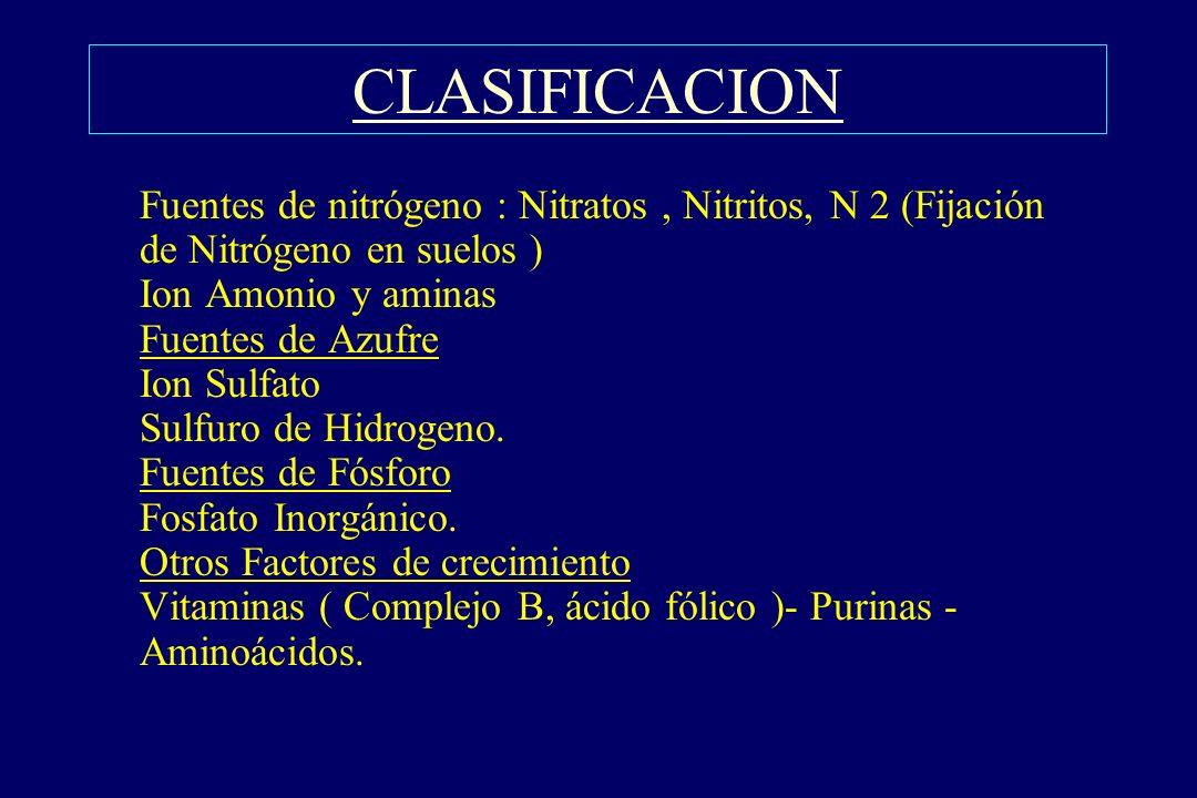 CLASIFICACION §Fuentes de nitrógeno : Nitratos, Nitritos, N 2 (Fijación de Nitrógeno en suelos ) Ion Amonio y aminas Fuentes de Azufre Ion Sulfato Sul