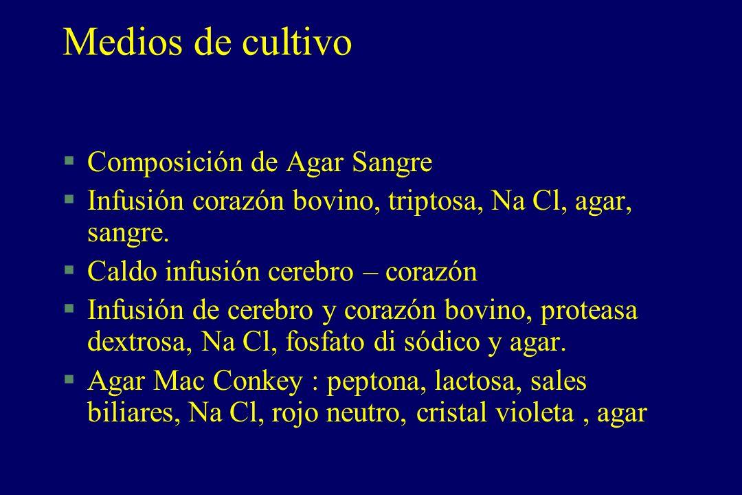 Medios de cultivo §Composición de Agar Sangre §Infusión corazón bovino, triptosa, Na Cl, agar, sangre. §Caldo infusión cerebro – corazón §Infusión de