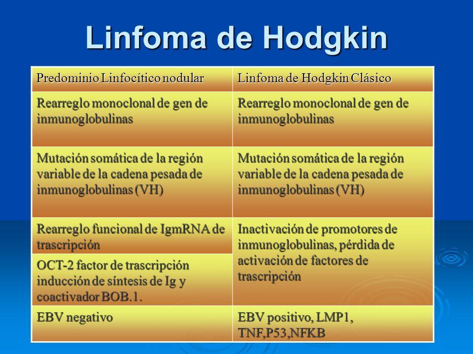 Linfoma de Hodgkin Predominio Linfocítico nodular Linfoma de Hodgkin Clásico Rearreglo monoclonal de gen de inmunoglobulinas Mutación somática de la r
