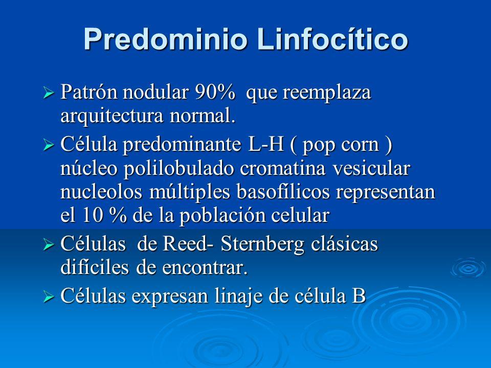 Predominio Linfocítico Patrón nodular 90% que reemplaza arquitectura normal. Patrón nodular 90% que reemplaza arquitectura normal. Célula predominante
