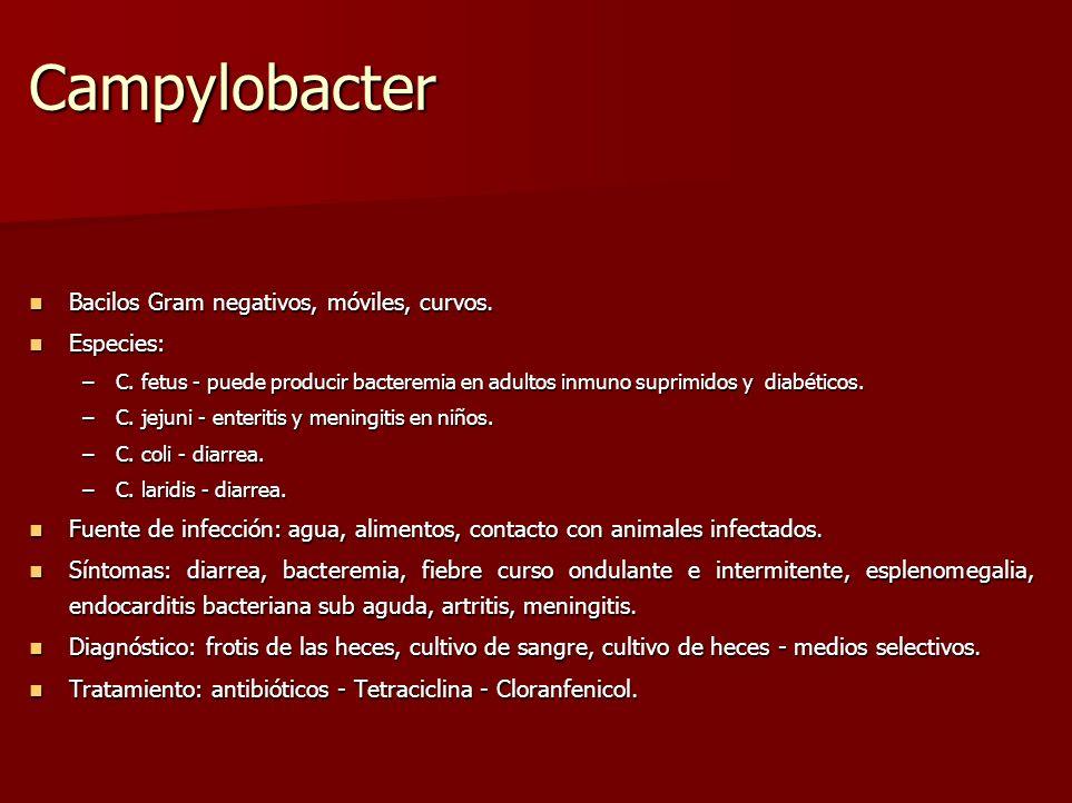 Campylobacter Bacilos Gram negativos, móviles, curvos. Bacilos Gram negativos, móviles, curvos. Especies: Especies: –C. fetus - puede producir bactere