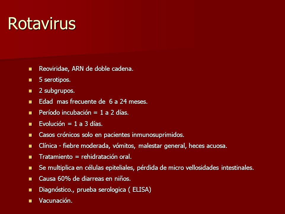 Rotavirus Reoviridae, ARN de doble cadena. Reoviridae, ARN de doble cadena. 5 serotipos. 5 serotipos. 2 subgrupos. 2 subgrupos. Edad mas frecuente de