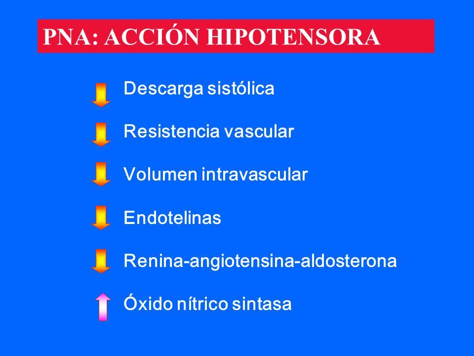 Descarga sistólica Resistencia vascular Volumen intravascular Endotelinas Renina-angiotensina-aldosterona Óxido nítrico sintasa PNA: ACCIÓN HIPOTENSOR
