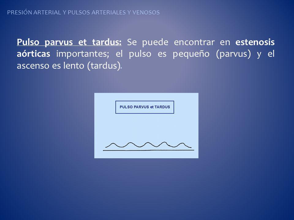 Pulso parvus et tardus: Se puede encontrar en estenosis aórticas importantes; el pulso es pequeño (parvus) y el ascenso es lento (tardus).