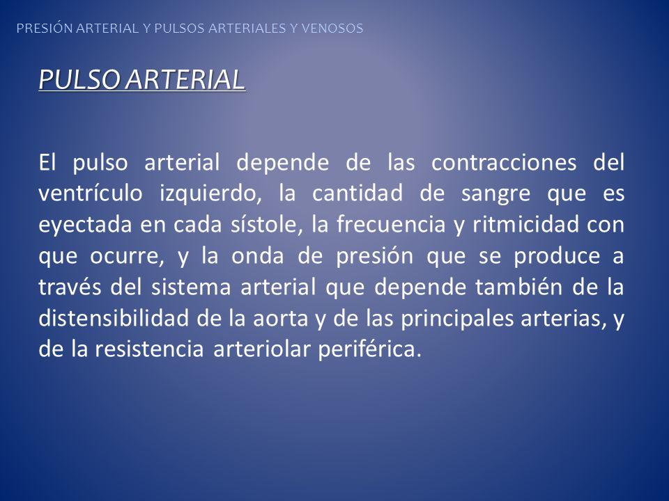 PRESIÓN ARTERIAL Y PULSOS ARTERIALES Y VENOSOS PULSO ARTERIAL El pulso arterial depende de las contracciones del ventrículo izquierdo, la cantidad de