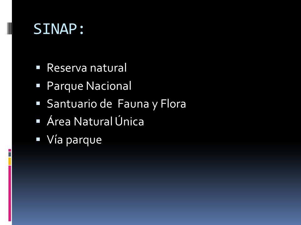 SINAP: Reserva natural Parque Nacional Santuario de Fauna y Flora Área Natural Única Vía parque