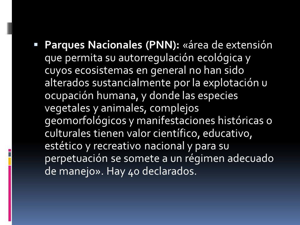 Parques Nacionales (PNN): «área de extensión que permita su autorregulación ecológica y cuyos ecosistemas en general no han sido alterados sustancialm