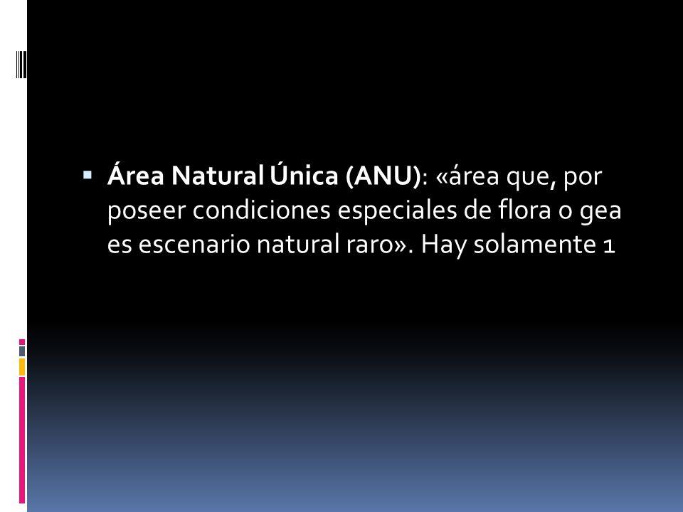 Área Natural Única (ANU): «área que, por poseer condiciones especiales de flora o gea es escenario natural raro». Hay solamente 1