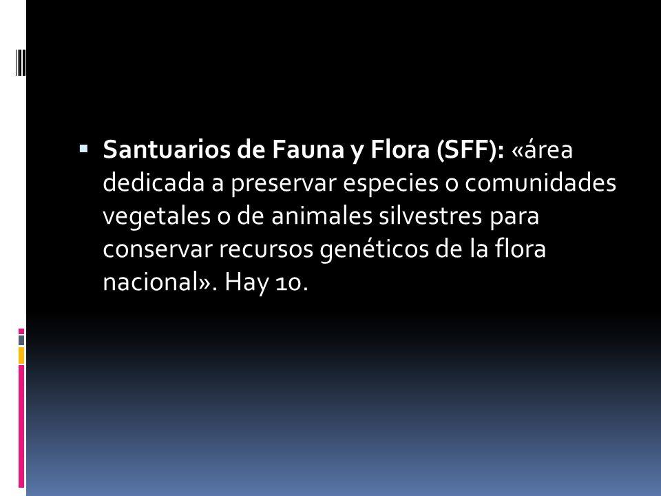 Santuarios de Fauna y Flora (SFF): «área dedicada a preservar especies o comunidades vegetales o de animales silvestres para conservar recursos genéti