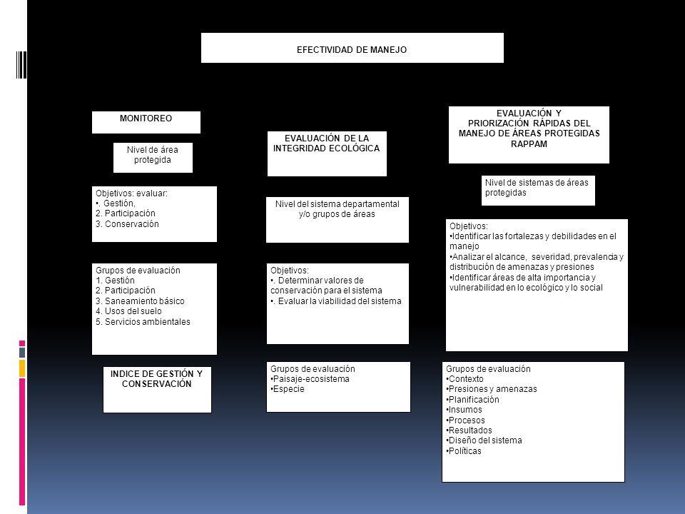 Grupos de evaluación Contexto Presiones y amenazas Planificación Insumos Procesos Resultados Diseño del sistema Políticas EFECTIVIDAD DE MANEJO MONITO