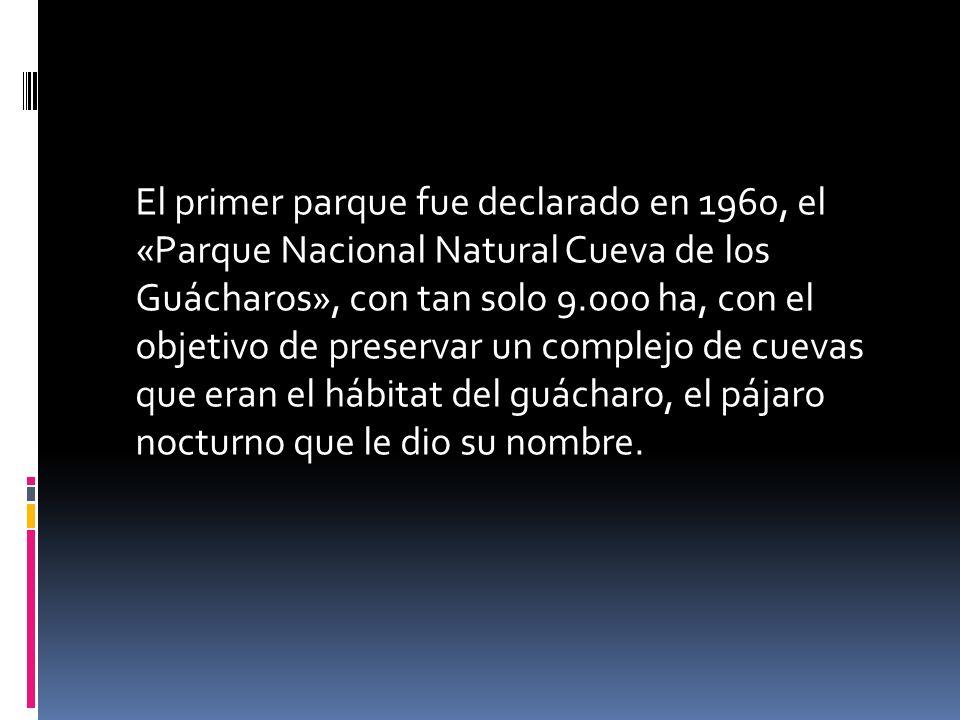 El primer parque fue declarado en 1960, el «Parque Nacional Natural Cueva de los Guácharos», con tan solo 9.000 ha, con el objetivo de preservar un co