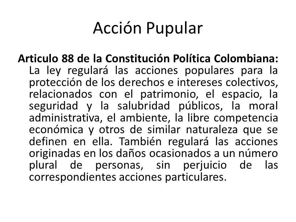 Acción Pupular Articulo 88 de la Constitución Política Colombiana: La ley regulará las acciones populares para la protección de los derechos e interes