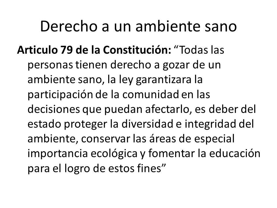 Articulo 79 de la Constitución: Todas las personas tienen derecho a gozar de un ambiente sano, la ley garantizara la participación de la comunidad en