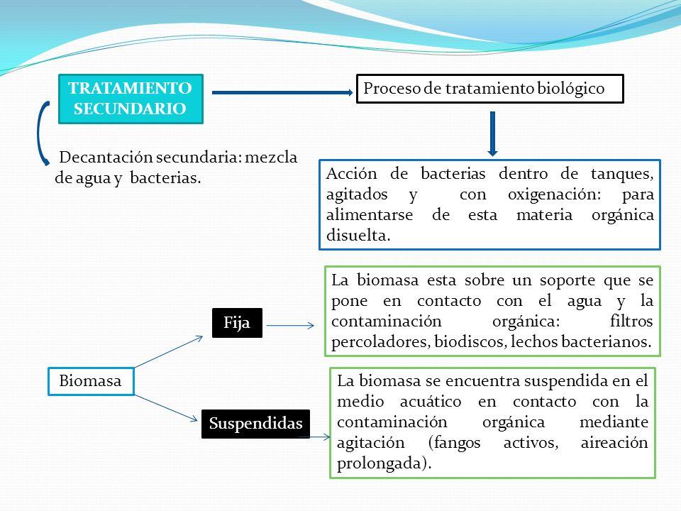La biomasa se encuentra suspendida en el medio acuático en contacto con la contaminación orgánica mediante agitación (fangos activos, aireación prolon