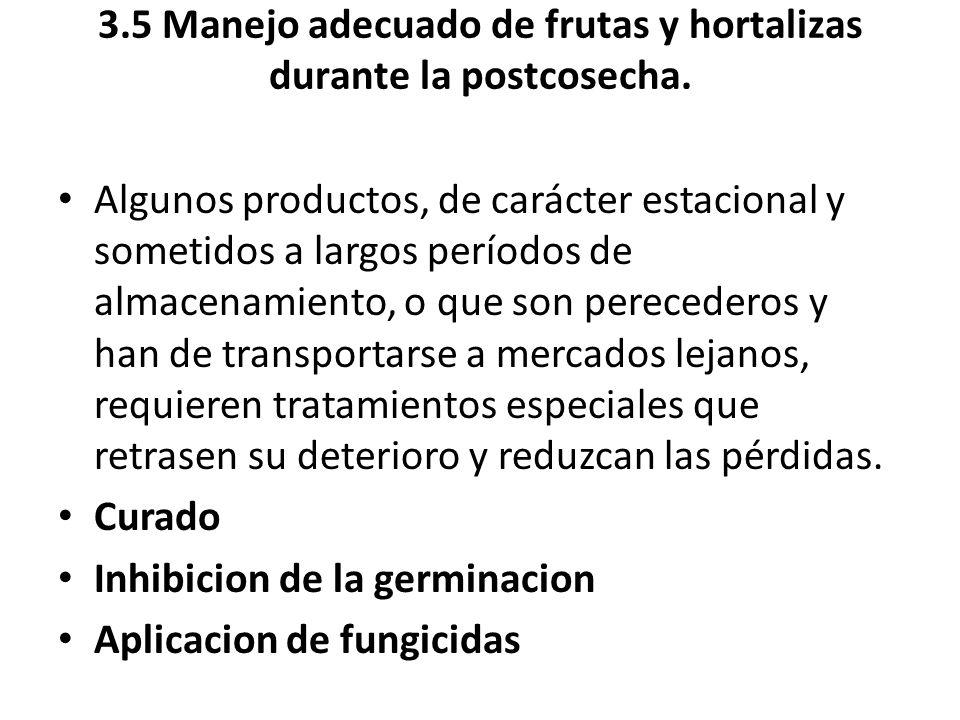 3.5 Manejo adecuado de frutas y hortalizas durante la postcosecha. Algunos productos, de carácter estacional y sometidos a largos períodos de almacena