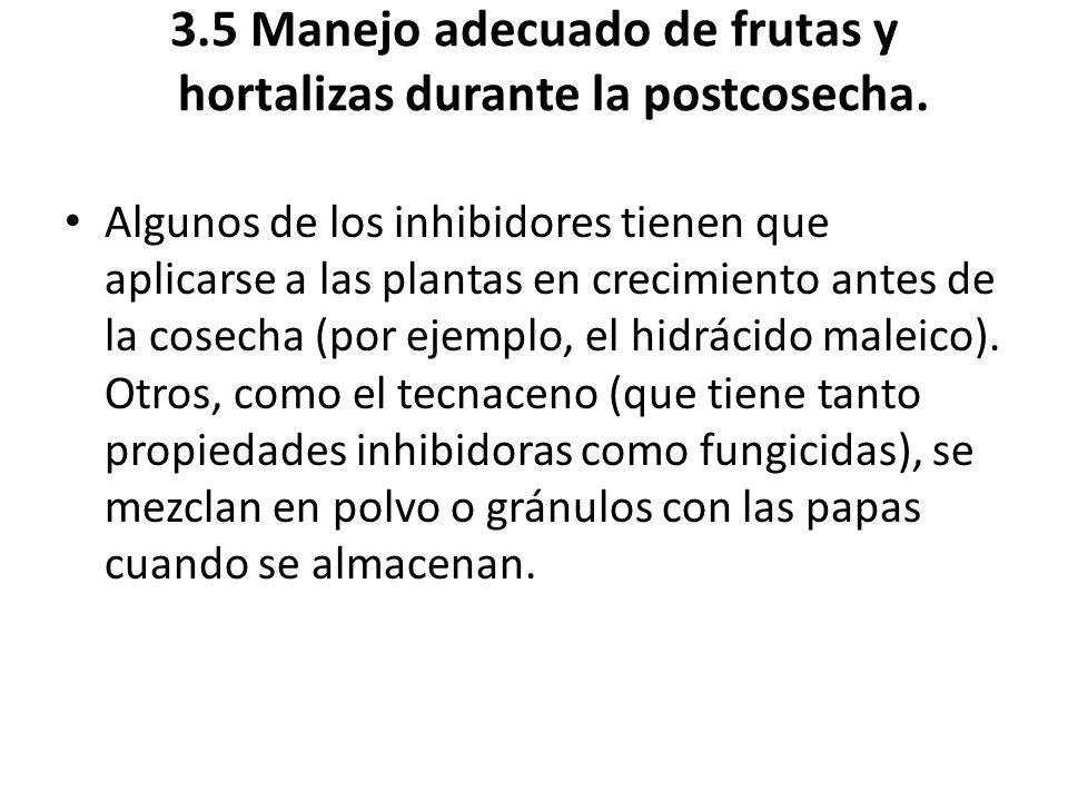 3.5 Manejo adecuado de frutas y hortalizas durante la postcosecha. Algunos de los inhibidores tienen que aplicarse a las plantas en crecimiento antes