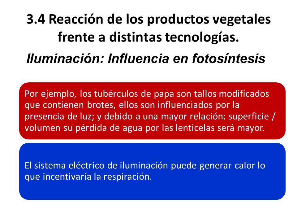 3.4 Reacción de los productos vegetales frente a distintas tecnologías. Por ejemplo, los tubérculos de papa son tallos modificados que contienen brote
