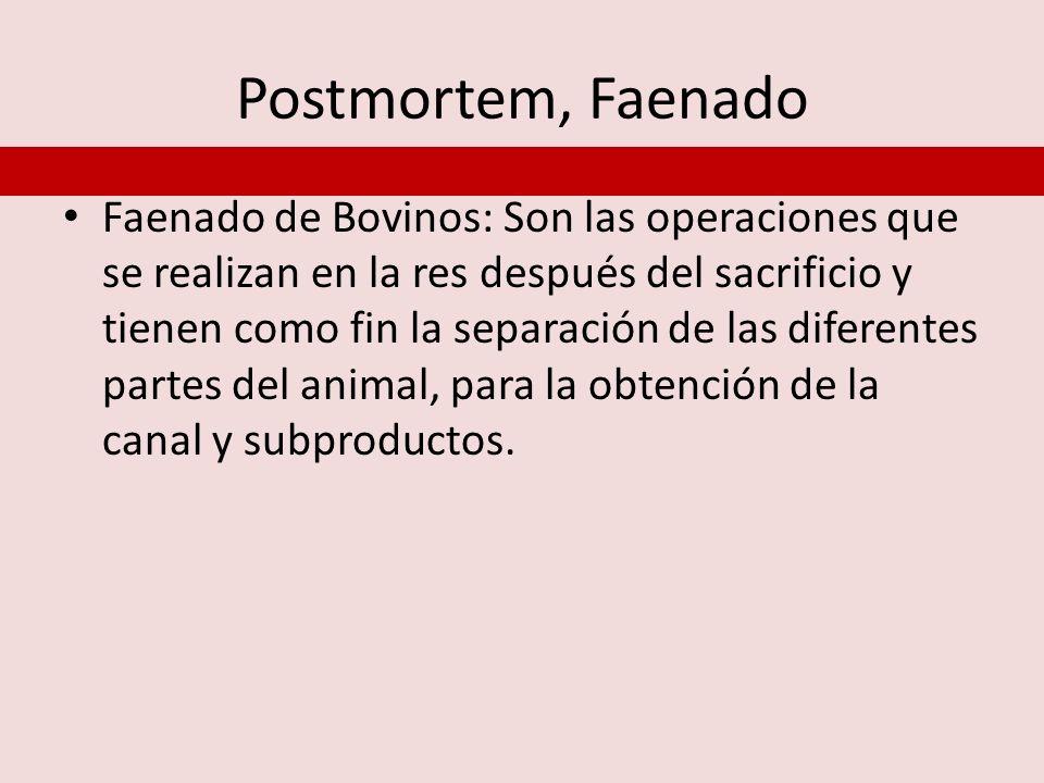 Postmortem, Faenado Faenado de Bovinos: Son las operaciones que se realizan en la res después del sacrificio y tienen como fin la separación de las di