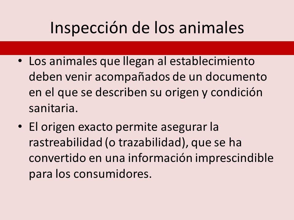 Inspección de los animales Los animales que llegan al establecimiento deben venir acompañados de un documento en el que se describen su origen y condi