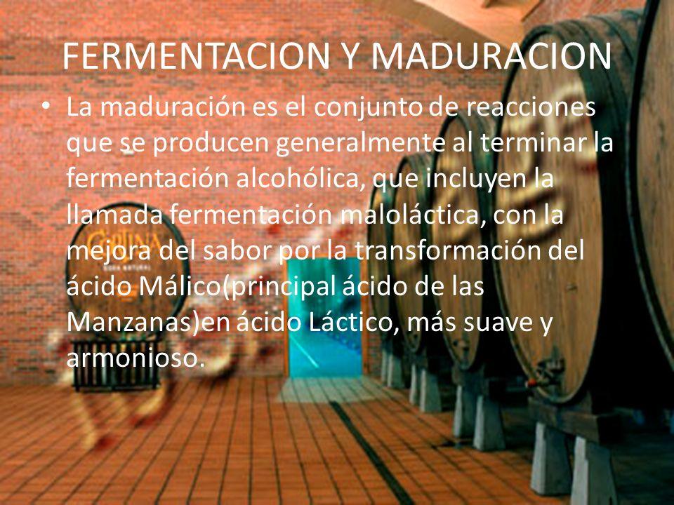 FERMENTACION Y MADURACION La maduración es el conjunto de reacciones que se producen generalmente al terminar la fermentación alcohólica, que incluyen