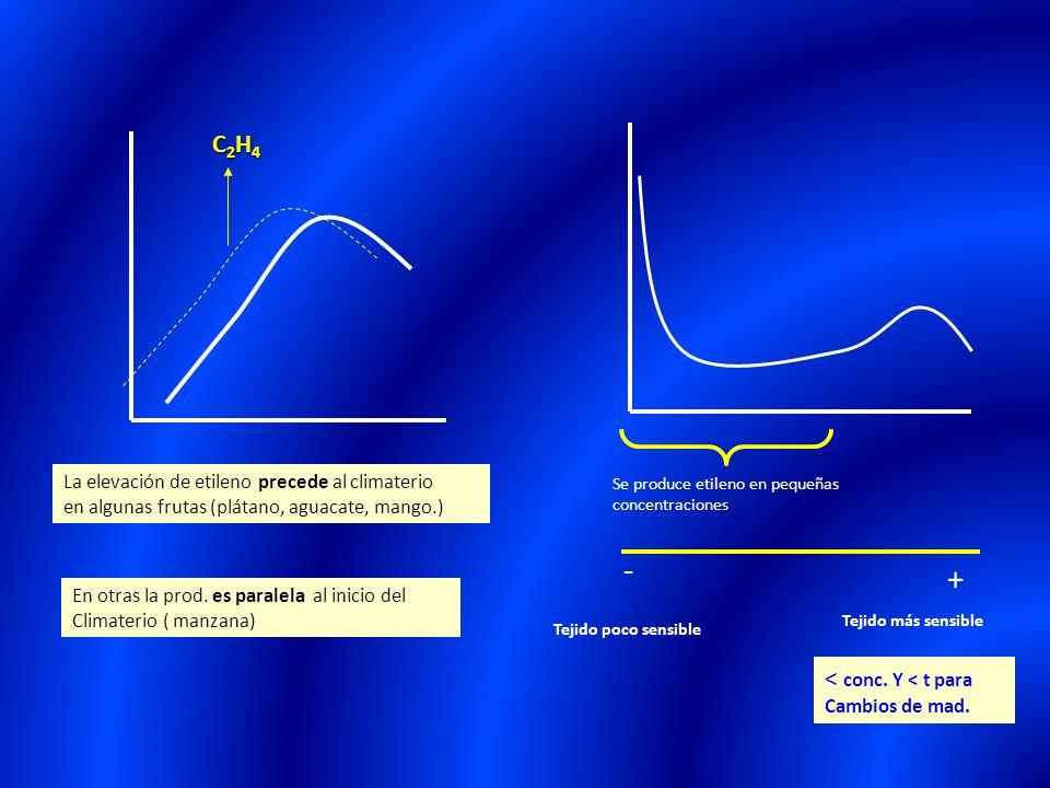 C2H4C2H4C2H4C2H4 La elevación de etileno precede al climaterio en algunas frutas (plátano, aguacate, mango.) En otras la prod. es paralela al inicio d