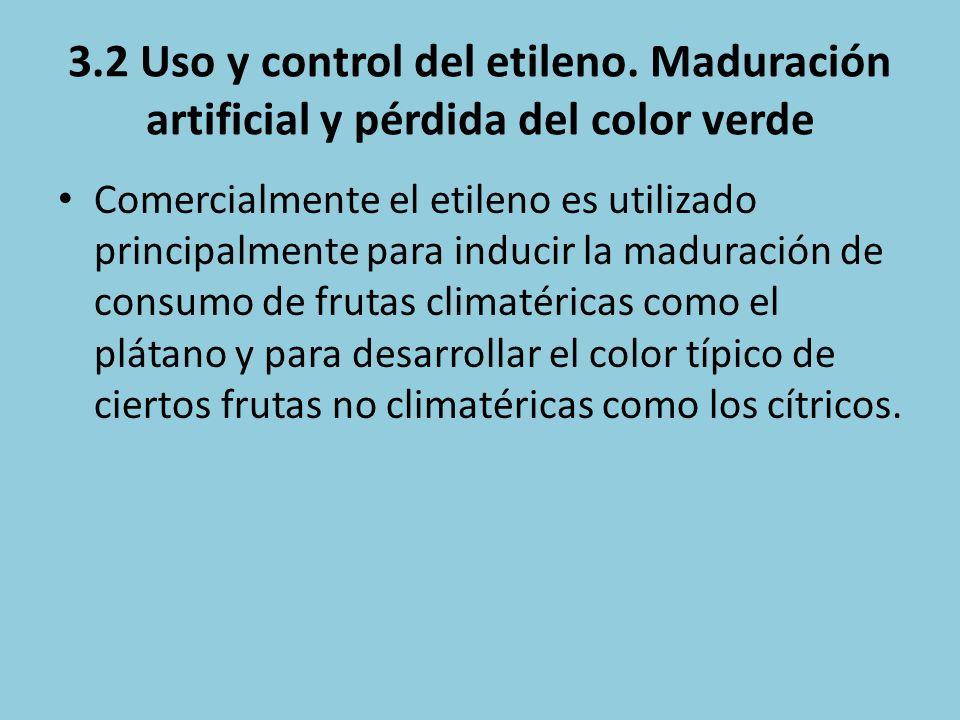 3.2 Uso y control del etileno. Maduración artificial y pérdida del color verde Comercialmente el etileno es utilizado principalmente para inducir la m