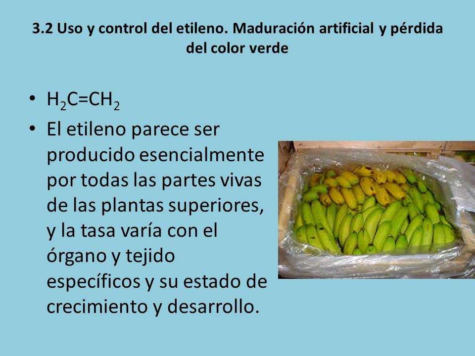 3.2 Uso y control del etileno. Maduración artificial y pérdida del color verde H 2 C=CH 2 El etileno parece ser producido esencialmente por todas las